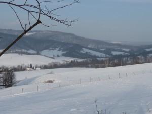 Panorama ze stoku otaczającego Polanę